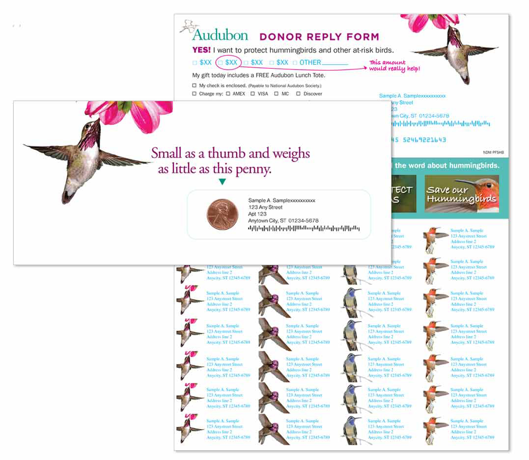 National Audubon Society Outer Envelope, Reply Form and Return Address Labels
