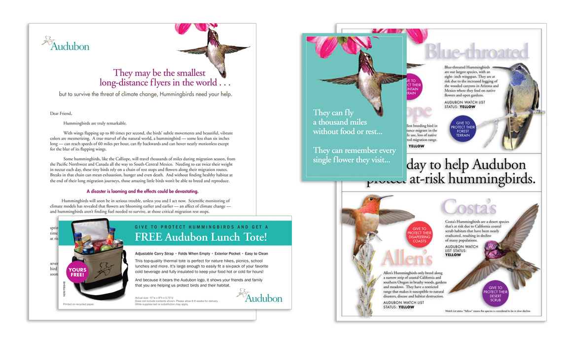National Audubon Society Winning Control Direct Mail Membership Package