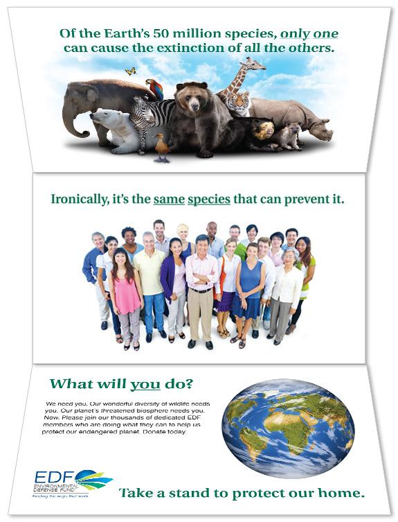 Environmental Defense Fund Carrier Interior Poster