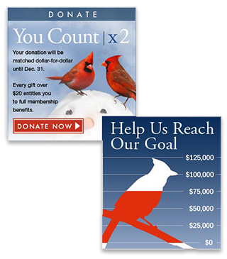National Audubon Society banner ads