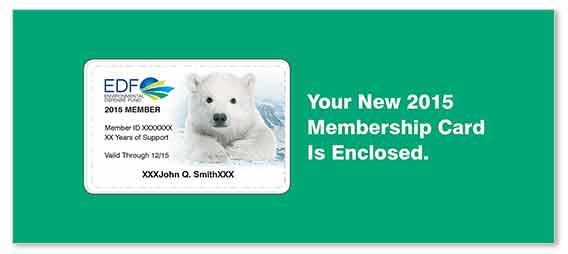 Non-profit Membership Renewal Outer Envelope