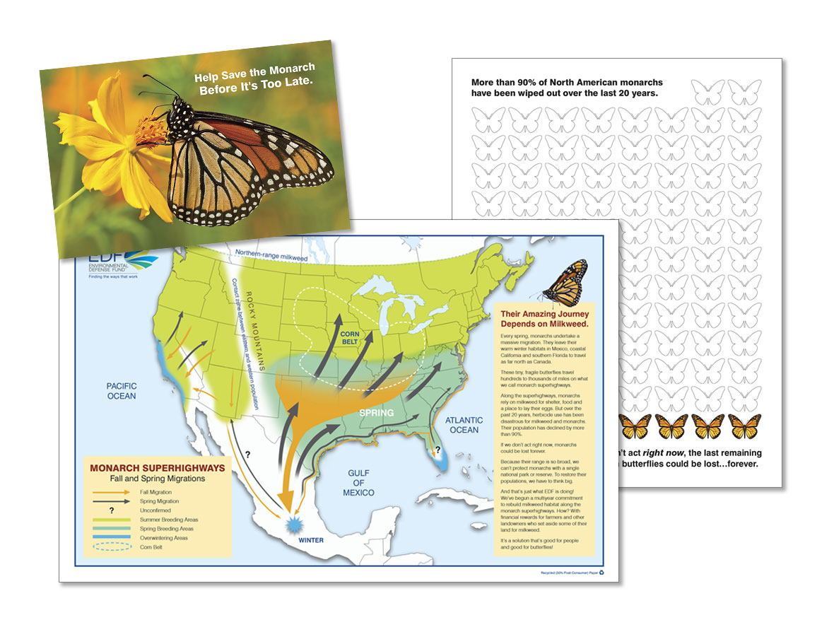 EDF Brochure with Butterfly Migration Map